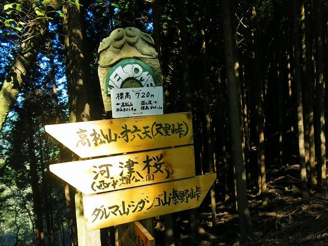 ルート脱線のまま続行!檜岳山稜ラウンド【丹沢】