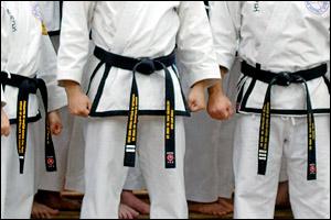Rhee Tae Kwon-Do 1st, 2nd, and 3rd Dan black belts