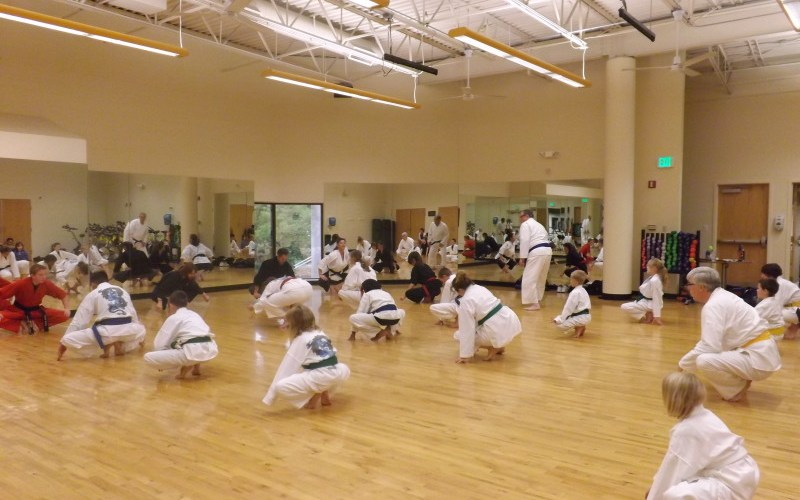 Mountain Academy Martial Arts Green Mountain
