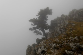 Onset of the ridge