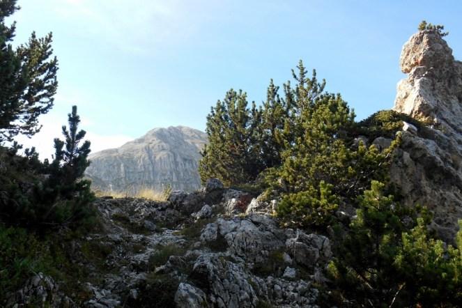 The col and Mt. Acquaviva