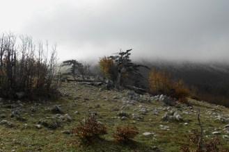 Towards the north ridge