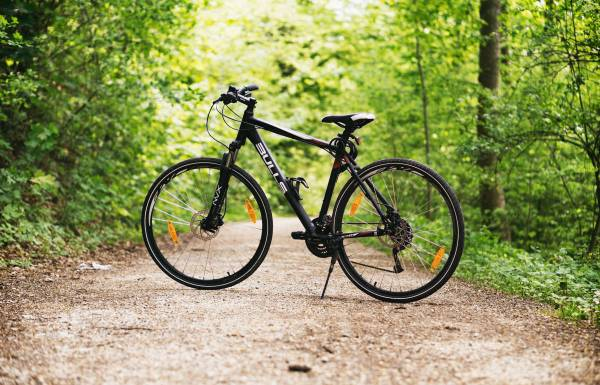 best mountain bikes for beginners