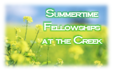 summertime fellowships 2016