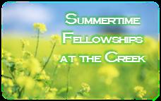 summertime fellowships 2016
