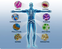 Understanding, Not Fearing, Cancer Part 4