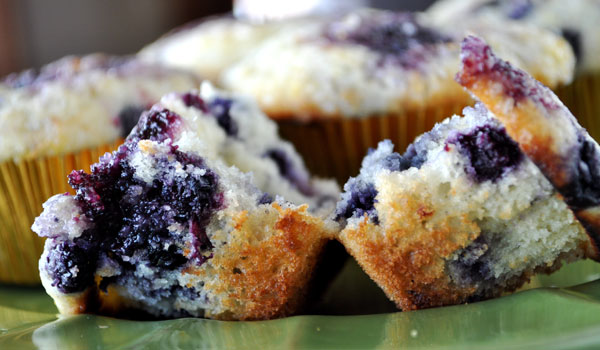 Blueberry Muffins Adjusted For High Altitude