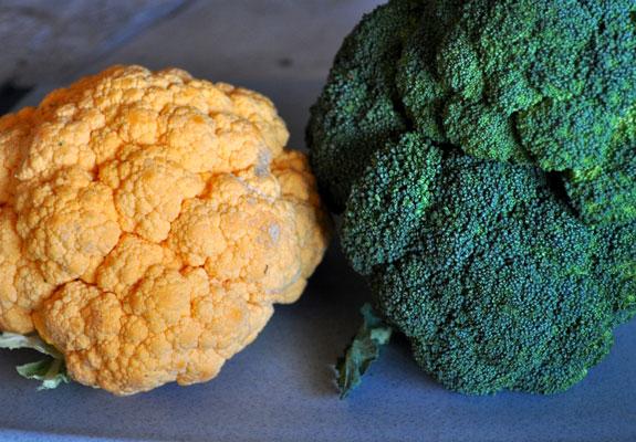 orange-cauliflower-and-broccoli-soup-recipe-mountain-mama-cooks-2