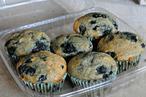 low-fat-blueberry-muffins-mountain-mama-cooks