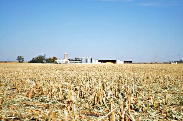 Iowa Corn Quest 2012, www.mountainmamacooks.com