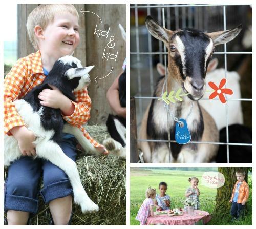 Kid & Kids, Zutano & Vermont Creamery Giveaway, www.mountainmamacooks.com