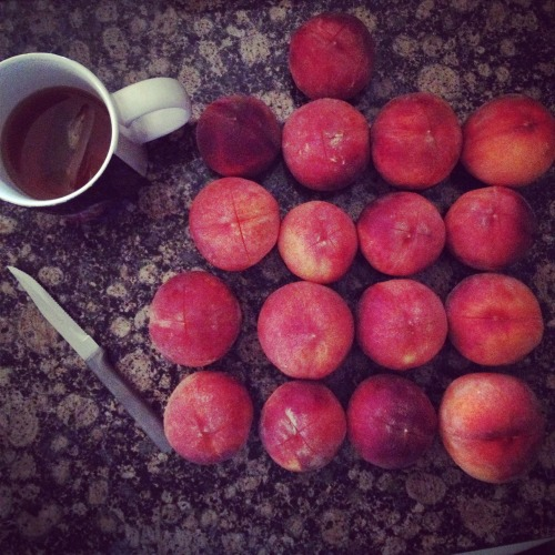 The last of the peaches were made made into a Peach-Habanero jam over the weekend.