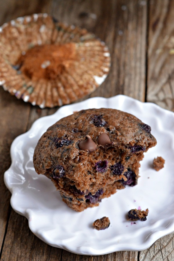 Chocolate Blueberry Muffins   mountainmamacooks.com