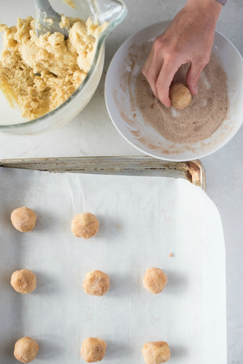 High Altitude Snickerdoodle Recipe | www.mountainmamacooks.com