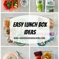 Easy Lunch Box Ideas | www.mountainmamacooks.com