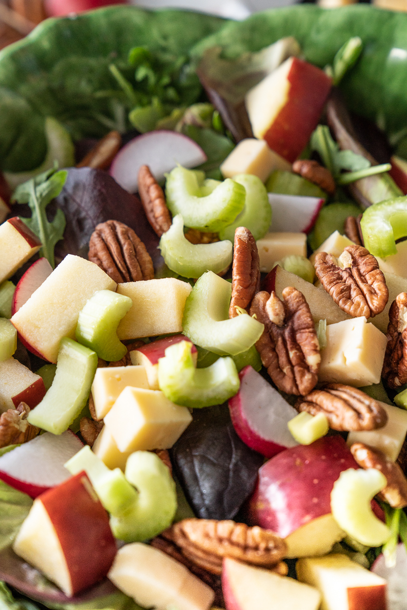 Crunchy winter salad recipe with mixed greens, apple, cheddar, celery, pecans, radishes, and a tangy homemade vinaigrette. www.mountainmamacooks.com