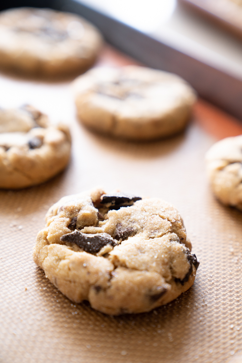 A close up of a single peanut butter chocolate chunk cookie. A single, perfect cookie. www.mountainmamacooks.com