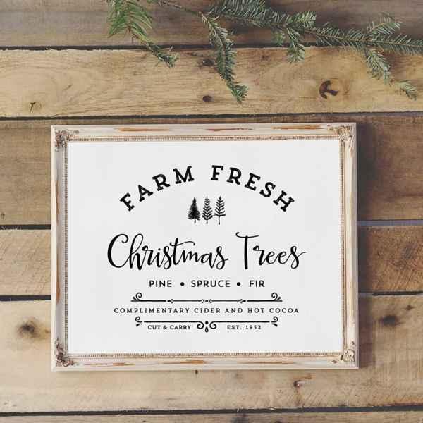 Farm Fresh Christmas Trees | MountainModernLife.com