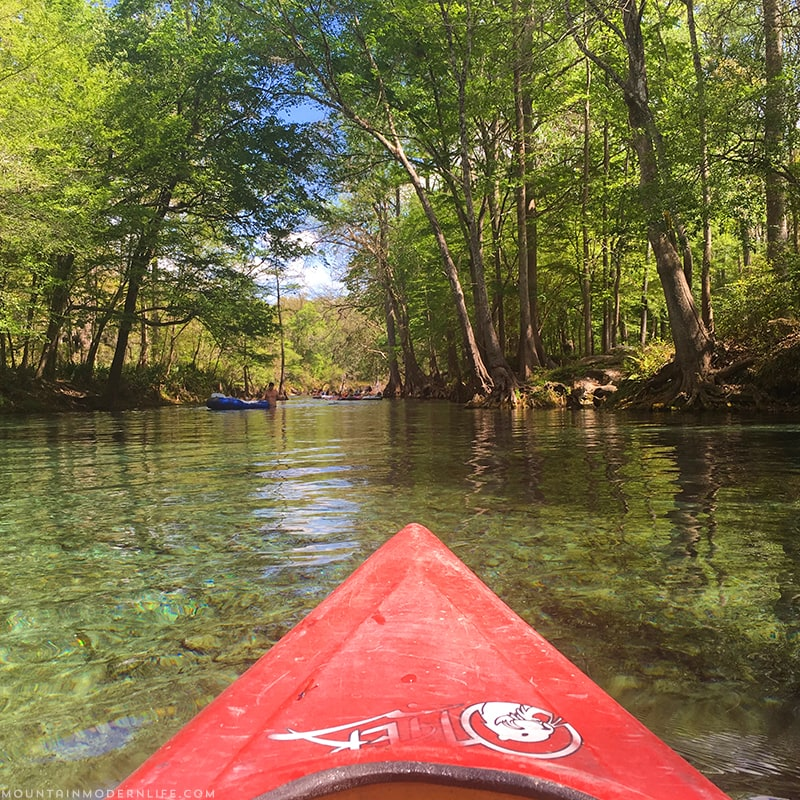 Take a trip with us as we go Kayaking down Santa Fe River in Northern Florida. Photo and video tour included. MountainModernLife.com