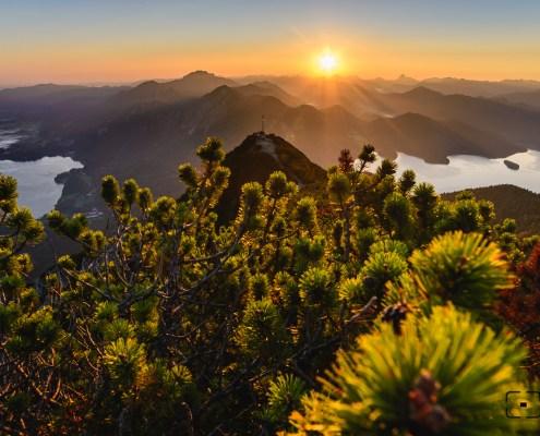herzogstand, sonnenaufgang herzogstand, sonnenaufgang walchensee, sunrise walchen lake, sunrise alps, sunrise bavaria, sunrise kochel, alpine lake, bavarian alps, bayerische alpen, herzogstand heimgarten,münchner hausberge