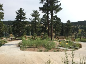 New Bison Overlook at Stapleton Drive, Exit 253
