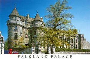 scotland_falkland_palace_tree_o