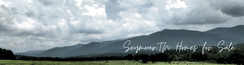 Sevierville Homes for Sale Buy a Smoky Mountain Sevierville Home