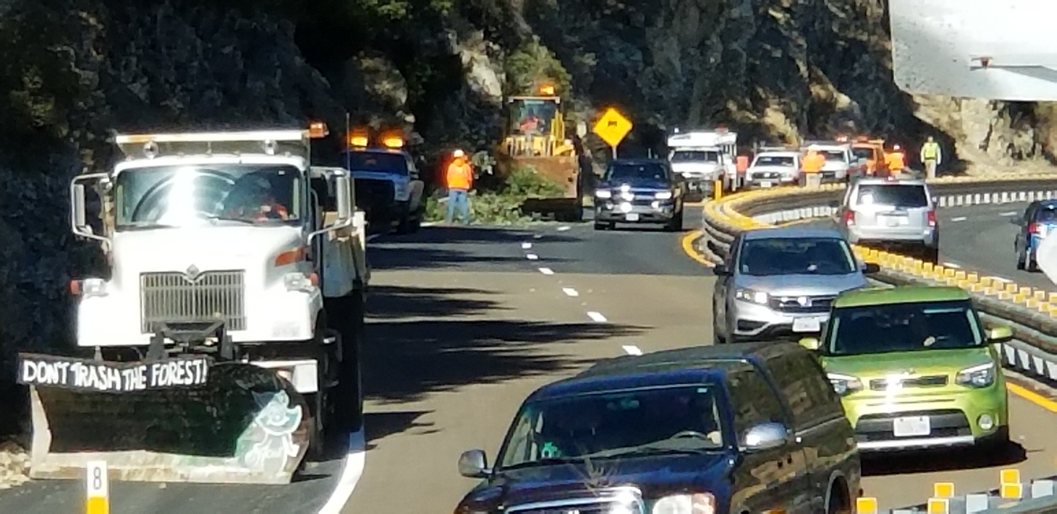 Tree Jumps Out in Front of Traffic on Highway 18 (yes, it finally