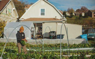 Urban Farm Start-Up
