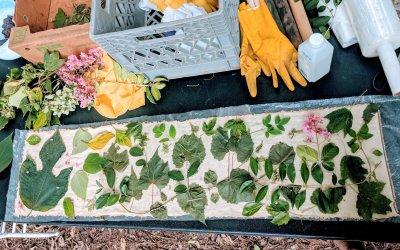 Natural Dye Making