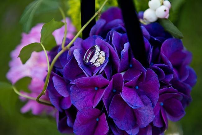 Purple Hydrangea   New Hampshire Mountain Wedding