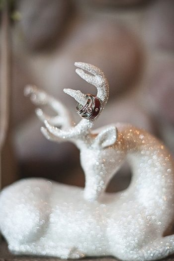 glitter deer   Pyramid Lake wedding   Jarusha Brown Photography