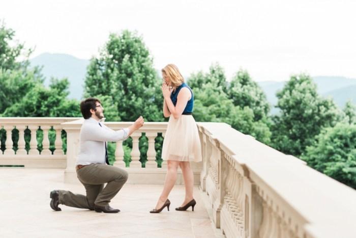 8 Suprise Proposal Mount Juliet Vineyard Virginia 3 Cats Photo Via Mountainsidebride Com