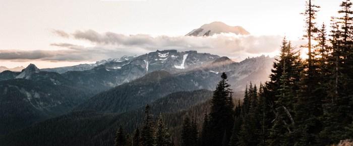 1 Mount Rainier Engagement Washington National Park The Foxes Photography Via MountainsideBride.com