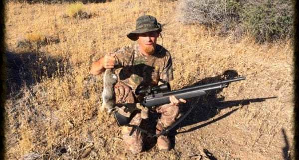cottontail hunt