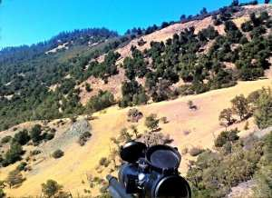 hunting ground squirrels with airguns