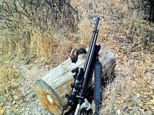 hunting ground squirrels with the marauder