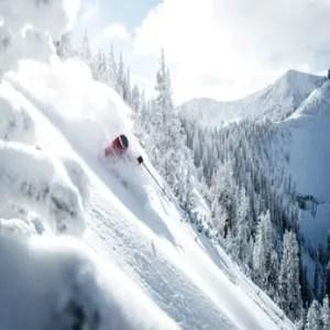 Snowbird Powder