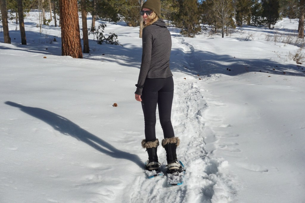 how to snowshoe guide