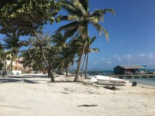 View from the Sandbar Beachfront Hostel
