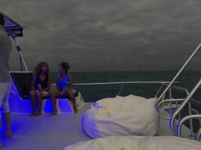 Island Dream Tours - Yolo