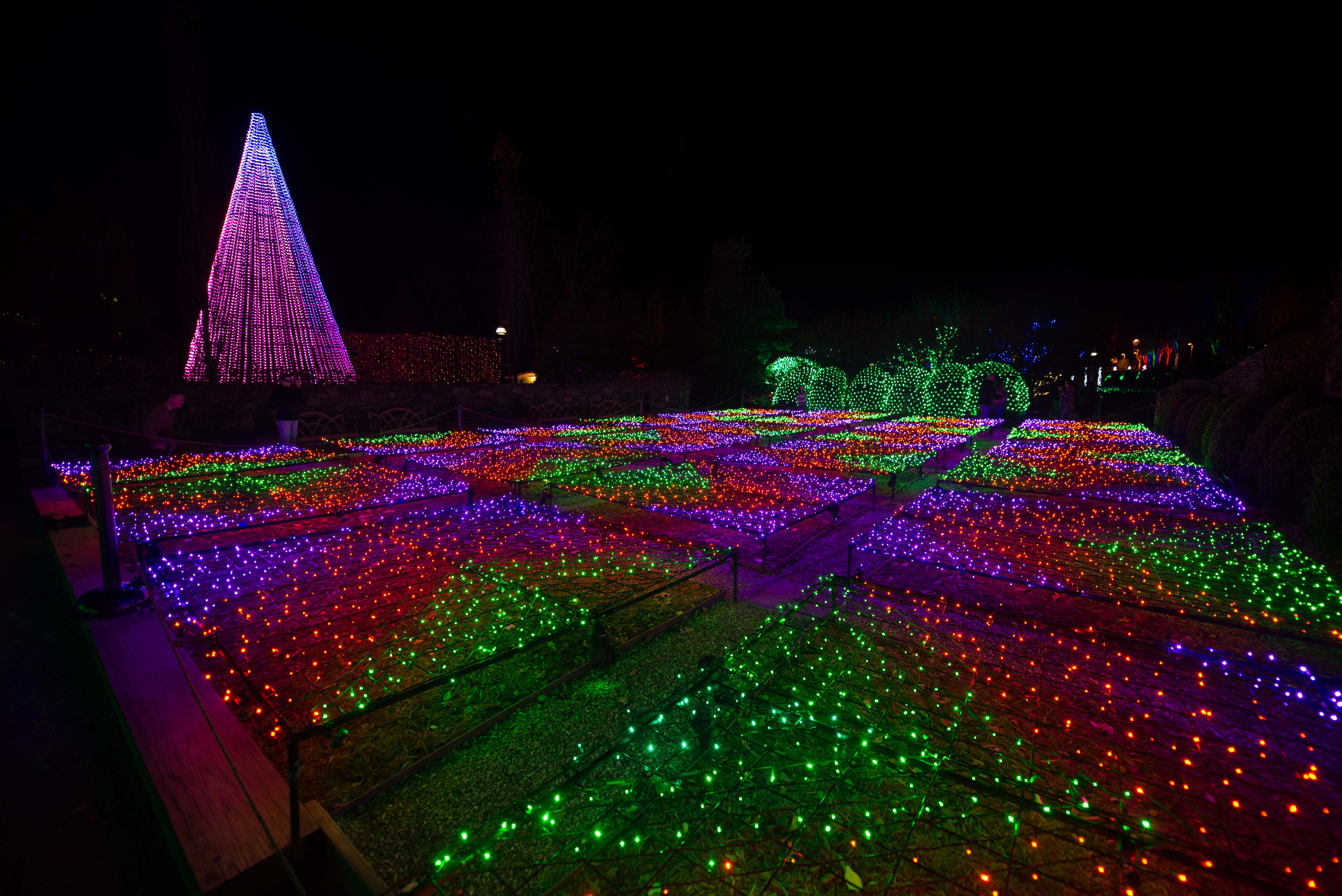 Winter Lights At The North Carolina Arboretum Mainly Southern Winter Lights  At The North Carolina Arboretum Places To See Holiday Lights In Asheville N  C ...