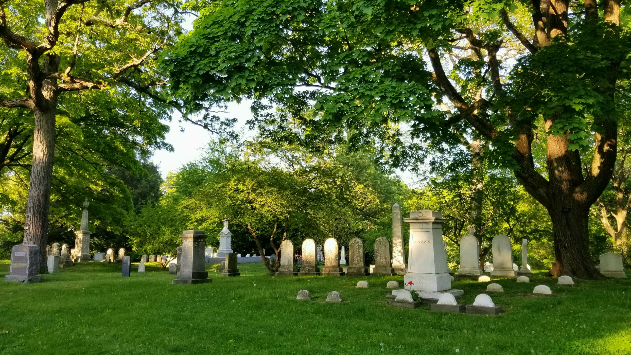 A wooded area characterized by old mature trees and 19th century marble memorials.