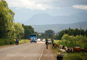 getting-to-mt-elgon-np