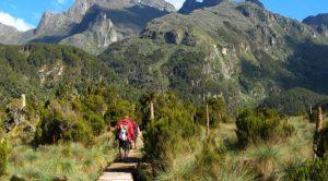 Uganda Mountain Hiking Safaris to Mount Elgon - Uganda Safari News 9 tips on how to recover after a hiking trip-Uganda Safari news