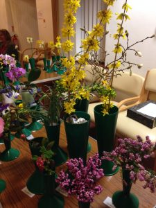 Spring show 2018 - Mountfitchet Garden Club