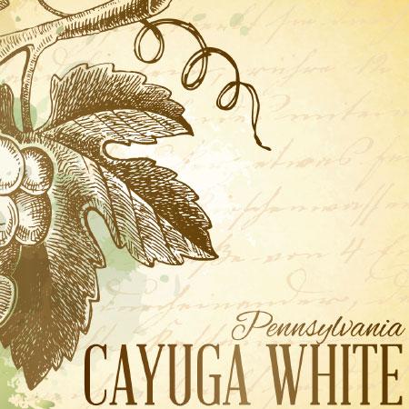 Cayuga White Label Icon
