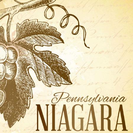 Niagara Label Icon