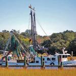 Mount Pleasant – Shem Creek – Lowcountry – Charleston – Seafood – vendors