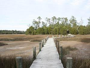 Mount Pleasant Palmetto Islands County Park. 2020 Best of Mount Pleasant.